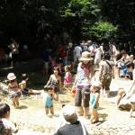 林試の森公園 じゃぶじゃぶ池オープン!
