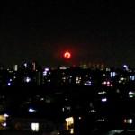 第22回神奈川新聞花火大会